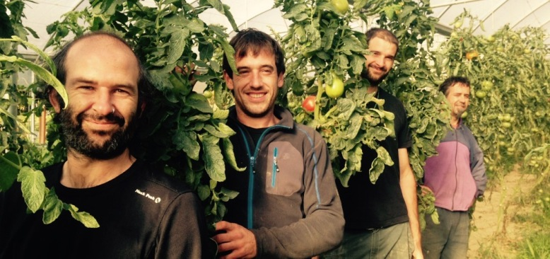 agroekologia ecologia verduras ecologicas